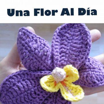 Una Flor al Día